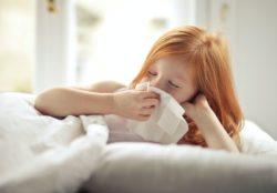 strengthen immune function health benefits